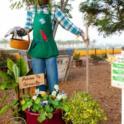 Scarecrows Park Appreciation4